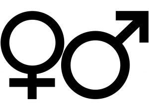 919297_male_female